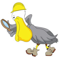 Pelican Inspections